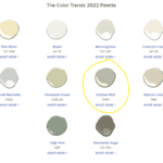 2022 Color of the Year - October Mist 1495